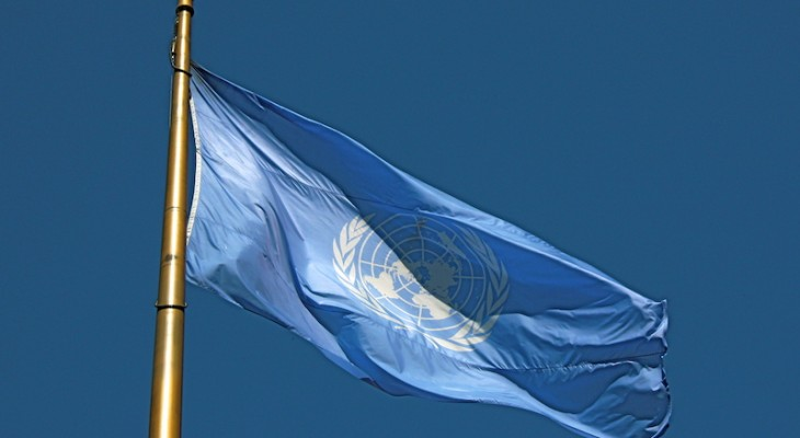 Scandal under the United Nations flag, By: Hossam Shaker
