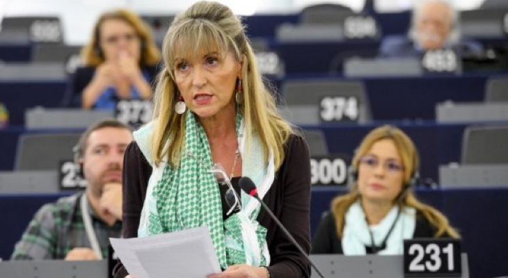 Urgent International Protection Needed for Palestinian Civilians, Urges MEP