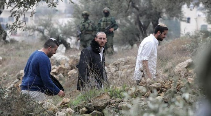 Israeli settlers open fire at Palestinian farmers during olive harvest