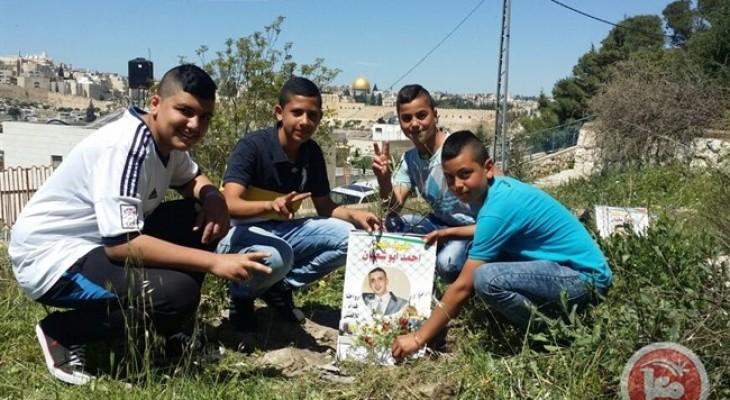 Israeli police uproot, burn olive tree saplings in East Jerusalem