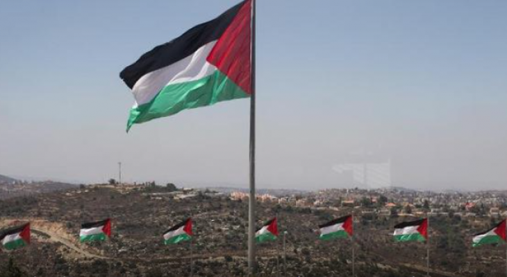 Dublin moves to fly Palestinian flag over city hall as 'gesture of solidarity'