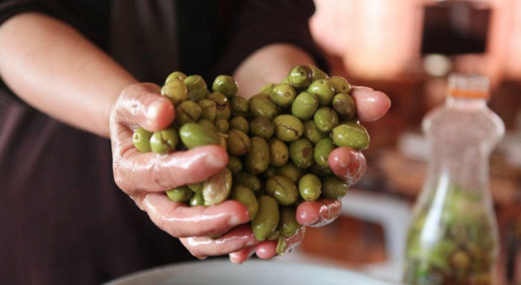 Palestine olive oil wins silver medal
