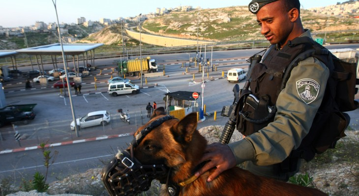 Palestinian sues Dutch supplier of Israel attack dogs