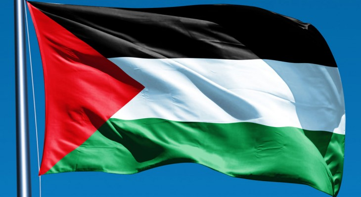 Rights group urges Ireland to recognise Palestine to achieve 'true justice for victims' of Israel