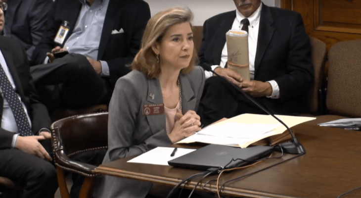 Georgia lawmaker says Israeli government 'asked me' for anti-boycott law she introduced